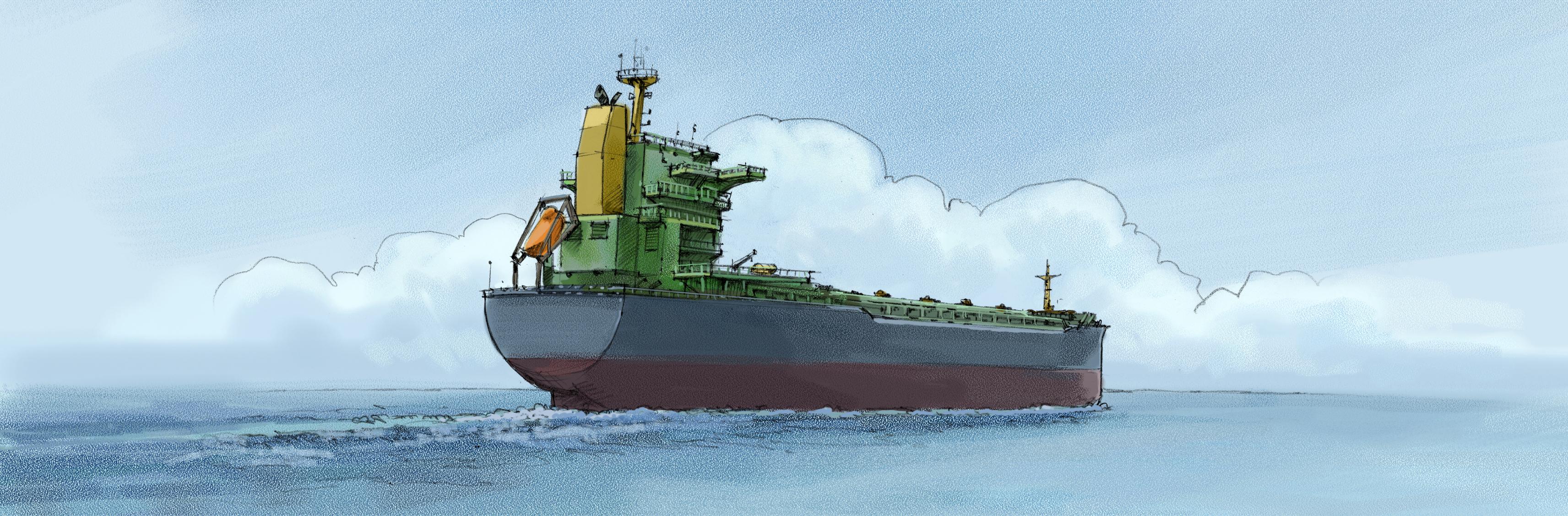 Sikkerhetsstyring ISM og vedlikeholdsystem, Bulk og stykkgods skip