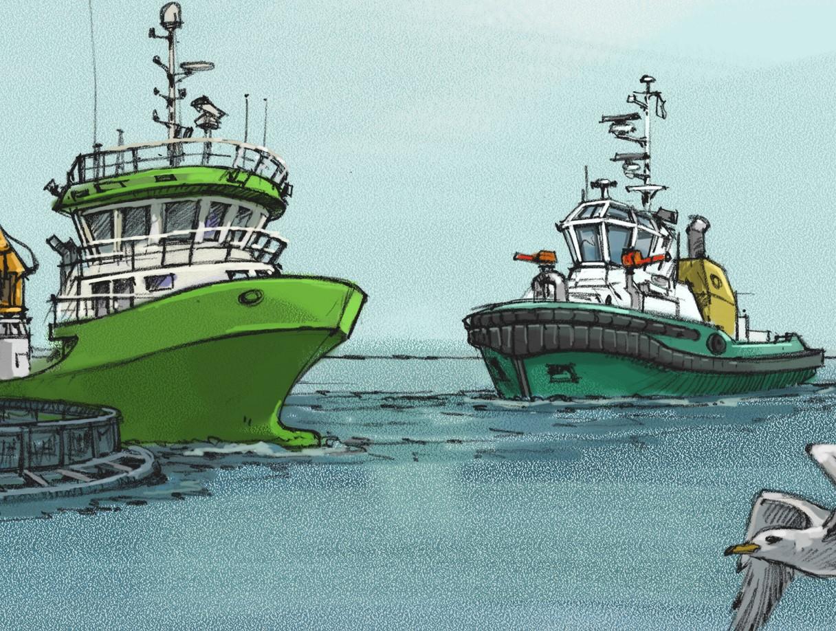 Sikkerhetsstyring og vedlikeholds systemer for oppdrett, bukser og arbeids båter og fartøy